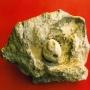 Refª nº: 0955-01. Molino de mano Neolítico hallado en la Dehesa El Carrascal